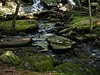Verdant (Professor Bop) Tags: olympusem1 professorbop drjazz vermont southernvermont verdant lush