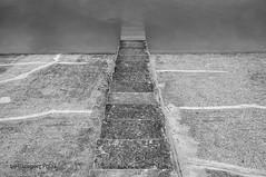 Stairs (Grzesiek.) Tags: sulistrowiczki stairs schody water woda zalew dam