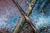 X2 (tehapo) Tags: finland frozen winter fallen tree x minimalism outdoor