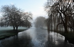 The River. (pstone646) Tags: river trees water reflections nature sunrise mist kent stour silhouettephotography silhouette light shade landscape