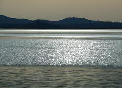 Strisce d'argento - Silver stripes (Ola55) Tags: ola55 italy trasimeno lago lake acqua water onde waves riflessi reflection argento silver umbria italians aplusphoto worldtrekker