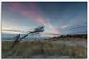 Sandy Hook (richpope) Tags: sunrise jerseyshore sandyhook gatewaynationalrecreationarea nationalgeographic sea beach sky newjersey