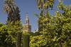 Alcazar (Sylvie Lebeuf) Tags: alcazar andalousie espagne sevilla spain séville jardin patrimoinemondialdelunesco sylvielebeuf