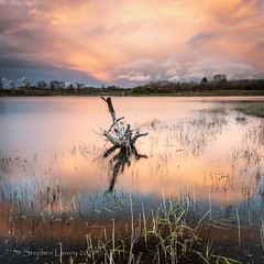 Lough Mourne (Stephen_Lavery) Tags: lough mourne
