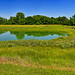 Cahokia Mounds State Historic Site Panorama near Collinsville (IL) June 2018