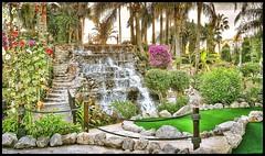 Tropical gardens in Palmanova 2 (wilstony1) Tags: tropicalgardens trees plants waterfall cascade flowers palms green colours flora samsunggalaxys6edge snapseed evening