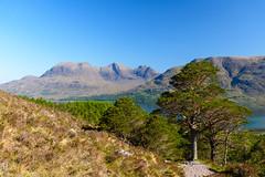 Beinn Alligin (Joe Hayhurst) Tags: 2018 highlands joehayhurst landscape may nikon scotland summer torridon beinn alligin