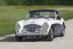 Austin Healey 100 (1955) (Roger Wasley) Tags: austin healey 100 1955 toddington classic car gloucestershire