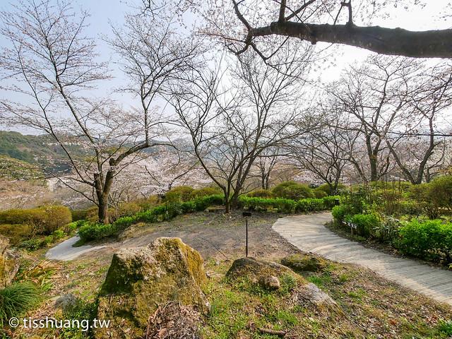 小城公園-1210019