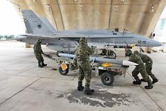 Armeros NBQ Ala 12 (Ejército del Aire Ministerio de Defensa España) Tags: ala12 nbq armeros f18 misil hangar baseaéreadetorrejón mimetizado hornet gato ejércitodelaire spanishairforce grupo militar aviation aviación base aérea weapon