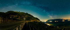 Milky Way over vineyards (escapevelocity-ch) Tags: hicham dennaoui escape velocity escapevelocitych nightscape switzerland suisse paysage nocturne beautiful amazing magnifique night landscape étoile star photo skies astrophotography astrophotographie nuit étoilé starry nikon d850 lavaux vaud milky way voie lactée mars saturne jupiter lake geneva lac léman epesses vignoble vineyard bow arc core