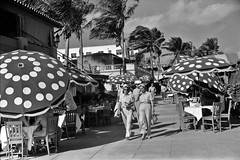 June in January, Miami Beach, Florida, 1939 (polkbritton) Tags: marionpostwolcott fsaowi floridahistory miamihistory vintagefashion libraryofcongresscollections 1930s