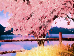The tree on the side of the lake. (PEA 2015) Tags: lake ipad photoshop painter