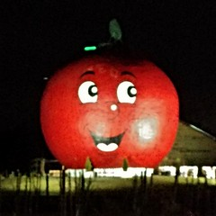 The Big Apple at night (Will S.) Tags: thebigapple bigapple colborne ontario colborneontario canada canadiana roadsideattraction roadsideattractions bigroadsideattraction bigroadsideattractions giantroadsideattraction giantroadsideattractions mypics largeroadsideattraction largeroadsideattractions anotherroadsideattraction bigobject bigobjects quinte quinteregion quintearea largeroundandred nighttime