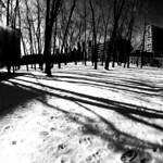 Griffintown Park Winter Shadows 3 thumbnail