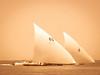 Regatta (Katja van der Kwast) Tags: dubai uae dhow regatta verenigde arabische emiraten zeilen zee sea 2018