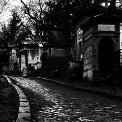 Trois vues du cimetière du Père-Lachaise, Paris en n&b I/III : Chemin de la Citerne. (stephane.desire) Tags: cimetière pèrelachaise paris noiretblanc carré lumière rue pavé tombeau