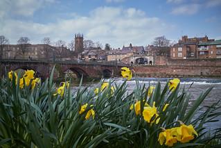 Springtime Chester