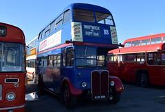 KLB 596 (markkirk85) Tags: bus buses aec regent iii saunders browns blue new london transport 41950 rt1347 klb 596 klb596