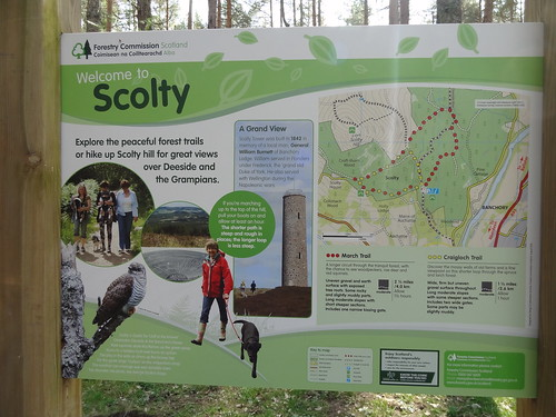 Scolty Hill Walk (33)