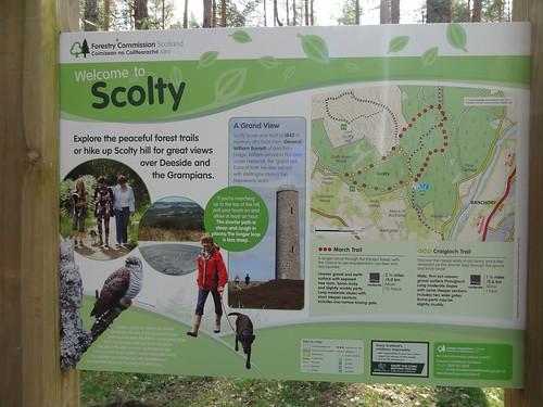 Scolty Hill Walk (33)