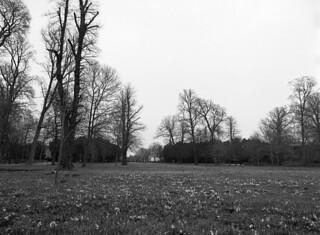 Frederiksberg Have: Vue mod Frederiksberg Runddel