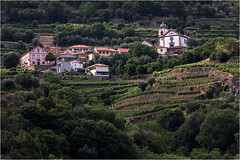 Portugal. Vallée du Douro. (leonhucorne) Tags: douro portugal travel voyage croisière cruise nikon d750 fullframe