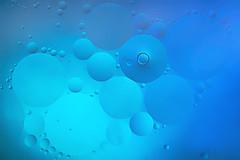 Circles (lfeng1014) Tags: macromondays circles oilandwater macro macrophotography closeup bokeh dof depthoffield hmm canon5dmarkiii ef100mmf28lmacroisusm light lifeng