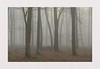 Madehurst Mist (hall1705) Tags: madehurstmist mistymorning misty fog trees westsussex woods d3200 outdoor