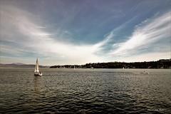 orizzonti  lacustri (IVAN 63) Tags: water sky see sea lake meer boat laghi lago lombardy gardasee
