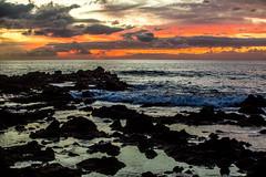 Wouldn't You Love to Love Her? (Thomas Hawk) Tags: america finnestate hawaii makena maui turtlepointestate usa unitedstates unitedstatesofamerica wailea waileaelua sunset kihei us fav10 fav25 fav50
