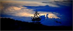 quand la nuit s'installe... (Save planet Earth !) Tags: sunset coucherdesoleil france nice amcc nikon sud