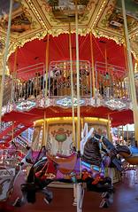 San Francisco – Pier 39 Carousel (David Paul Ohmer) Tags: san francisco california waterfront pier 39 carousel horse