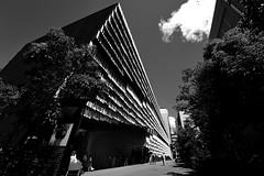 Tokyo Daiwa Ubiquitous Computing Lab (Myajima) Tags: japon japan tokyo université university kengokuma arcitecture architecte architect 日本