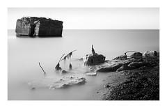 leftover (ddaugenblick) Tags: baltic sea ostsee meer weststrand bunker sw bw
