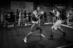 31206 - Face Off (Diego Rosato) Tags: boxe pugilato boxing boxelatina match incontro ring bianconero blackwhite tamron 2470mm nikon d700 rawtherapee face off