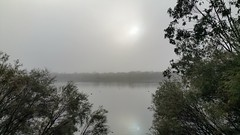 morning fog on the water (ClareSnow) Tags: australia lakegwelup lake perth fog winter