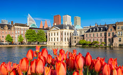 _MG_4052 - Mauritshuis and Binnenhof in Hague (AlexDROP) Tags: 2018 netherlands europe holland hague denhaag travel architecture skyline tower color city wideangle urban scape canon6d ef16354lis best iconic famous mustsee picturesque postcard tulip