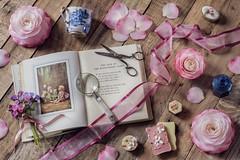 Picture in Pink (memoryweaver) Tags: flatlay stilllife memoryweaver woodsorrel flowerfairies flowerfairy vintage ribbon antiques blueandwhite teacup camellia
