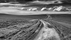 Senda marcada (una cierta mirada) Tags: landscape sky clouds cloudscape outdoors countryside road path bnw blackandwhite nature land earth lumix lumixgx8