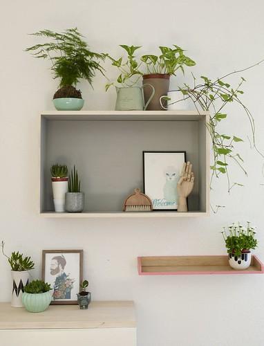 DIY Shelves Ideas : www.blackoveja.com ©Simon Upton/Jacqui Small Publishing Beautiful book