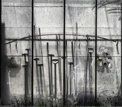 Tools and Stuff (nokkie1) Tags: greenhouse tools stuff glass lines