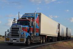 Shaws Darwin Transport Triple Road Train (Scottyb28) Tags: truck trucking trucks highway haulage diesel road train triple augathella brisbane darwin shaws loaded fridge outback truckers