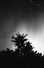 Night time Nikon (aloha_bigmike) Tags: mikecaputo nikonf3 film 35mm kodaktrix400 kodakd76 bigisland hawaii