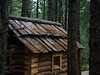 Small forest hut (Alexander-_-Laz) Tags: forest reserve wood house tree green needles roof window shadow dim russia park