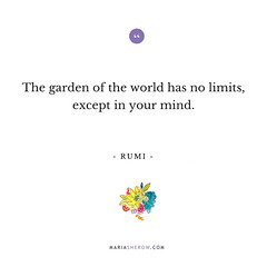 045-Rumi (mariasherow) Tags: inspirational quotes quote
