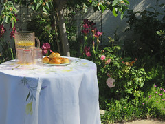 Spring in the garden. Le printemps dans le jardin. (Traveling with Simone) Tags: garden flowers jardin fleurs blumen iris irises rose table tablecloth flower limonade lemonade glasses plate buns rolls nappe broderie backyard plants leaves feuilles relaxation enjoyment