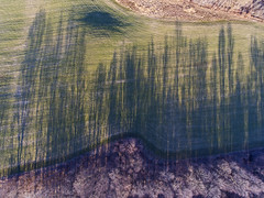 Earth (Matt Champlin) Tags: chiefseattle life nature landscape shadows amazing peace peaceful earthday environment savetheplanet field farm farming spring springtime drone drones aerial 2018 dji djiphantom4 phantom4