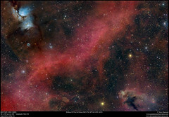 Ribbon of Fire In Orion  (Sh2-276, M78 & LDN 1622) (Terry Hancock www.downunderobservatory.com) Tags: qhy qhy367c sky space astronomy astrophotography astroimaging universetoday cosmos