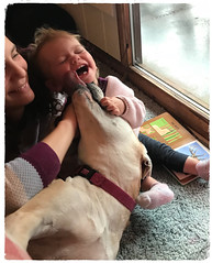 Kisses (kewzoo) Tags: dog baby babies laughing mother family